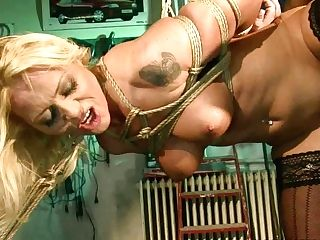Bosomy Ash-blonde Honey Gets Her Beaver Fucked Up Rear End Style